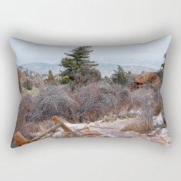The path Rectangular Pillow