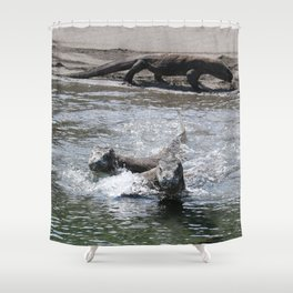 Komodo dragons take to the water Shower Curtain