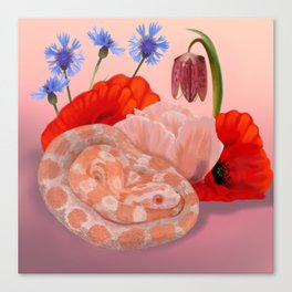 Snek and Poppies Canvas Print