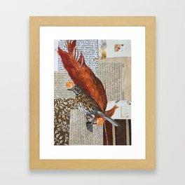 British Birds Framed Art Print