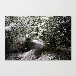 Snowy Path in The Trees Canvas Print