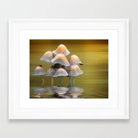 mushrooms Framed Art Prints featuring Mushrooms by Shalisa Photography