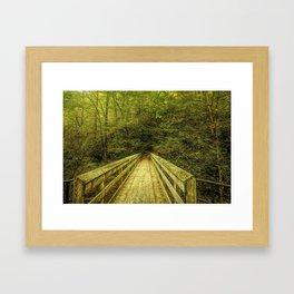Bridge To Moore Cove Falls Framed Art Print