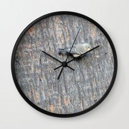 TEXTURES -- Warbler on Palm Bark Wall Clock
