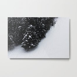 Black and white spruce forest and snow Metal Print
