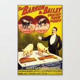 Vintage Circus Poster - Trained Pigs Canvas Print