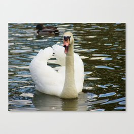 Open wide Canvas Print