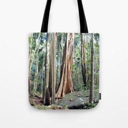 Curtis Falls Rainforest Tote Bag