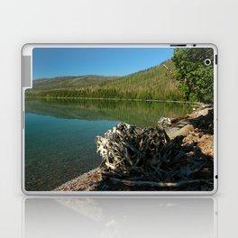 Driftwood On Lakeshore Laptop & iPad Skin