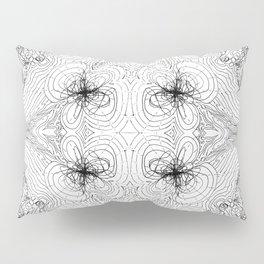 Orbital Theory: S.P.D.F... Pillow Sham