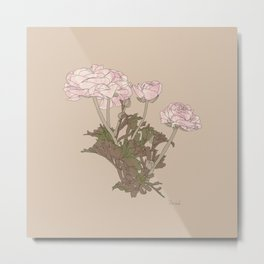 Ranunculus bunch Metal Print