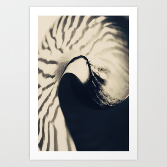 Nautilus No.1 Art Print