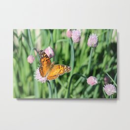 Orange Butterfly on Chives Metal Print