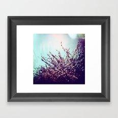 Holga Flowers II Framed Art Print