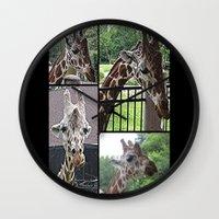 giraffes Wall Clocks featuring Giraffes  by grapeloverarts