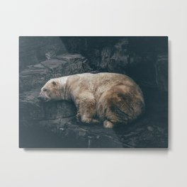 Sleeping polar bear Metal Print