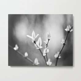 Black and White Nature Photography, Dark Grey Tree Branches, Gray Neutral Botanical Branch Leaves Metal Print