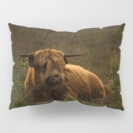 Scottish Highland hairy cow Pillow Sham