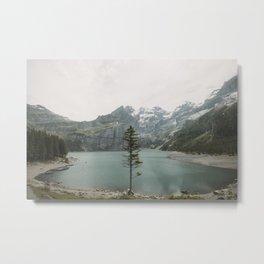 Lone Switzerland Tree - Landscape Photography Metal Print