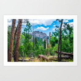 Custer State Park Landscape Print Art Print