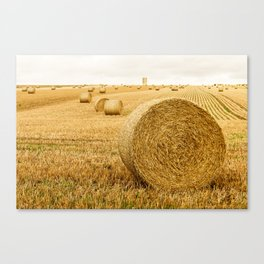 Baled out Canvas Print