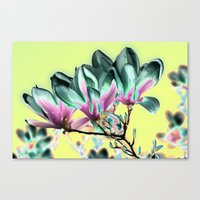 popart Canvas Prints featuring MAGNOLIA - PopArt by CAPTAINSILVA
