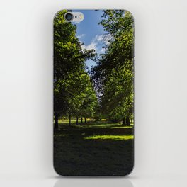 Avenue of trees iPhone Skin