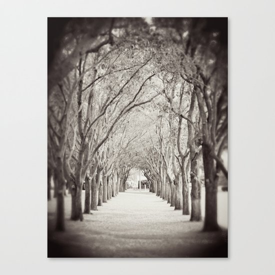 Follow the path Canvas Print