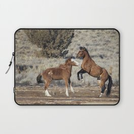 Bachelor Stallions Practicing the Art of Fighting, No. 1 Laptop Sleeve