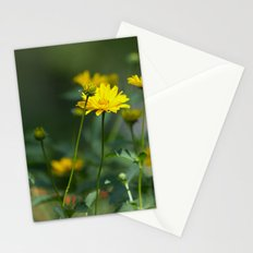 Sunny Road Stationery Cards