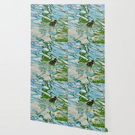 Mallard duckling swimming Wallpaper