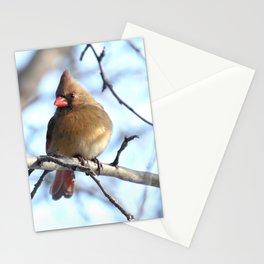 Madame cardinal 2020b Stationery Cards