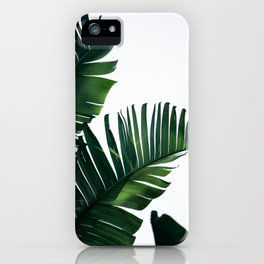 Palm Leaves 16 iPhone Case