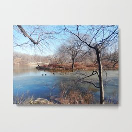 Winter in Central Park, NYC Metal Print