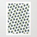 Blueberries by picklefilms