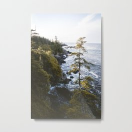 Wild Pacific Metal Print