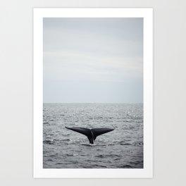 A whale salute Art Print