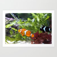 finding nemo Art Prints featuring Finding Nemo! by Becky Dix