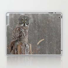 Flurries in the forecast Laptop & iPad Skin