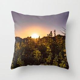 Sunlight shining through lupine Throw Pillow