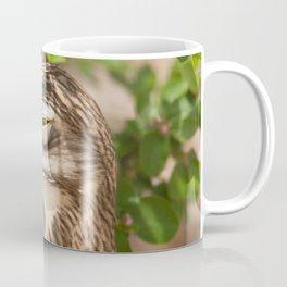 Not sure if serious.. Coffee Mug
