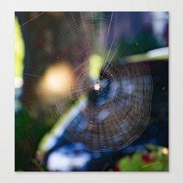 Cobweb. Canvas Print