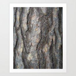 pine tree bark - scale pattern Art Print