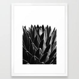 Agave Chic #7 #succulent #decor #art #society6 Framed Art Print