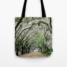 The Fountain of Youth 450th Year Celebration Tote Bag