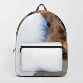 Squirrel Eats A Walnut Backpack