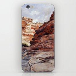 Havasupai iPhone Skin
