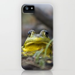 Northern Green Frog iPhone Case
