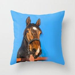 Horse Albert Throw Pillow