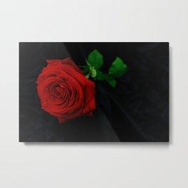 Red rose Side Metal Print